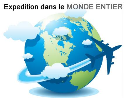 expedition dans le monde entier