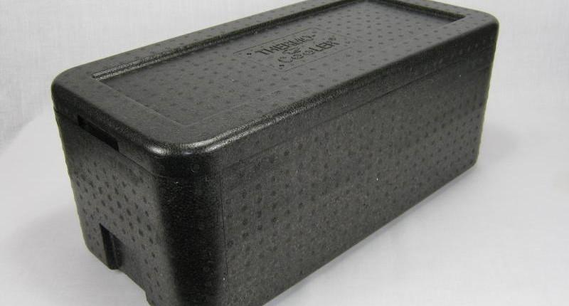 Boîte-polystyrène-isotherme-transport-expédition-reptile-